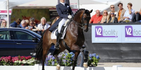6th Place- World Breeding Dressage Championships for Young Horses